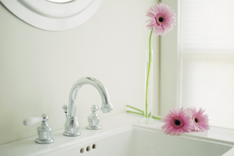 Flowers at Bathroom Sink